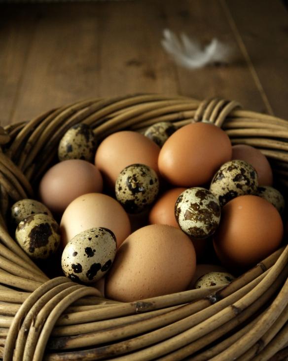Eggs 2gg