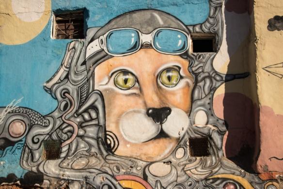 casa-street-art-11-of-14